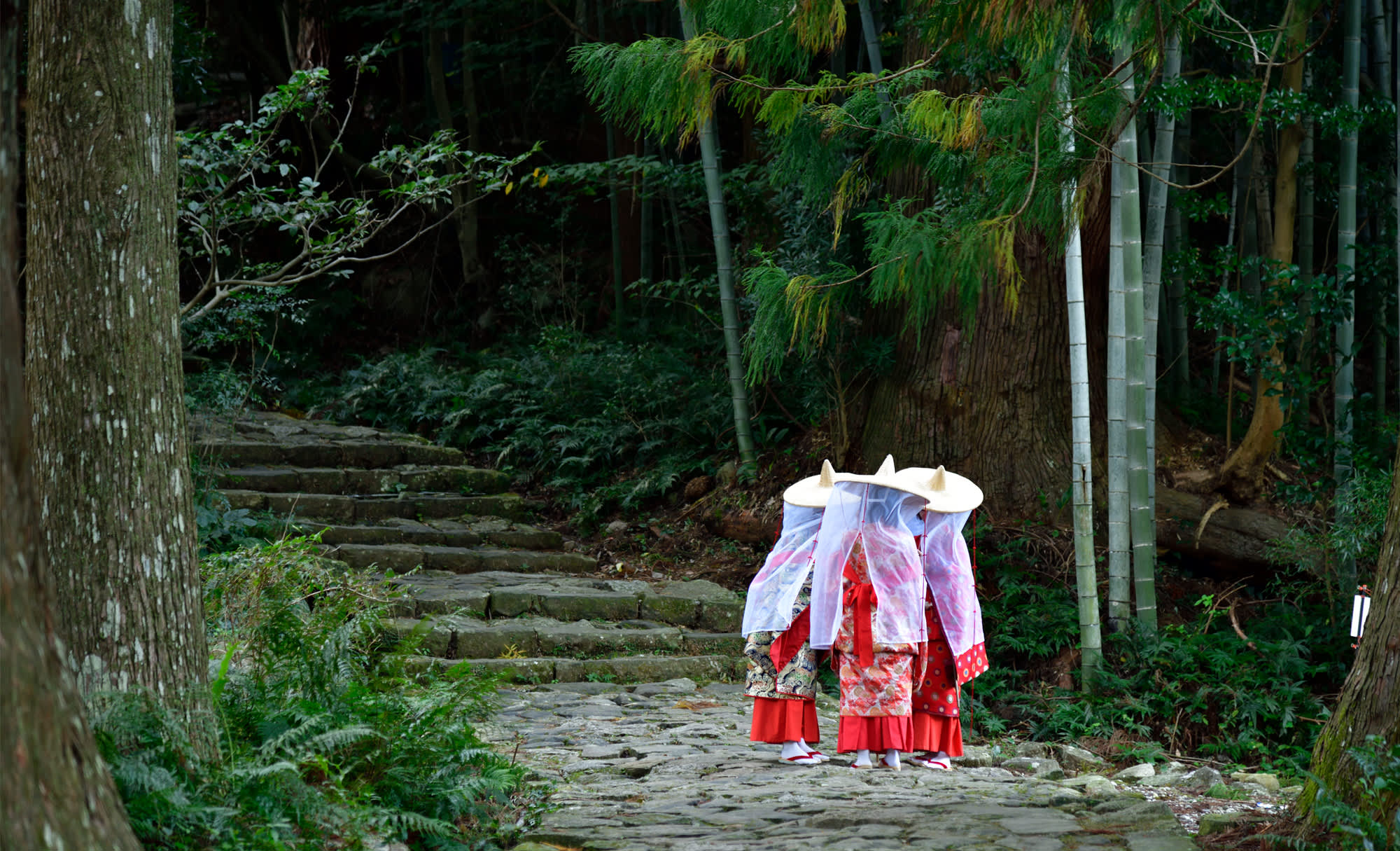 The Kumano Kodo Pilgrimage Routes