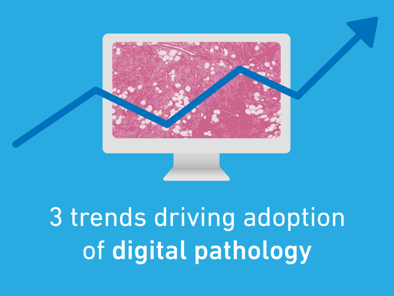 3 Trends Driving Adoption of Digital Pathology