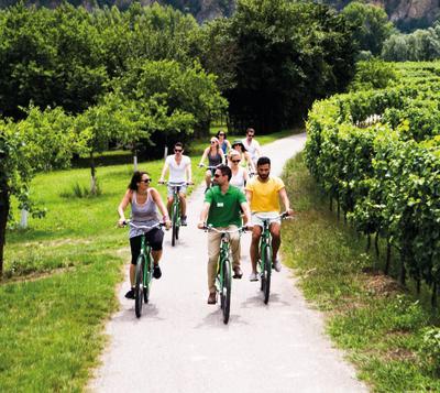 Winery Bike Tour