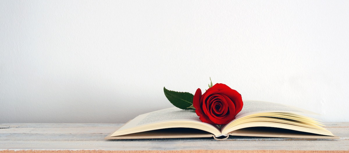 Writing 101: What Is a Romance Novel? Learn About the