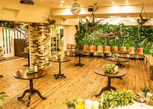 green_lounge_top_1