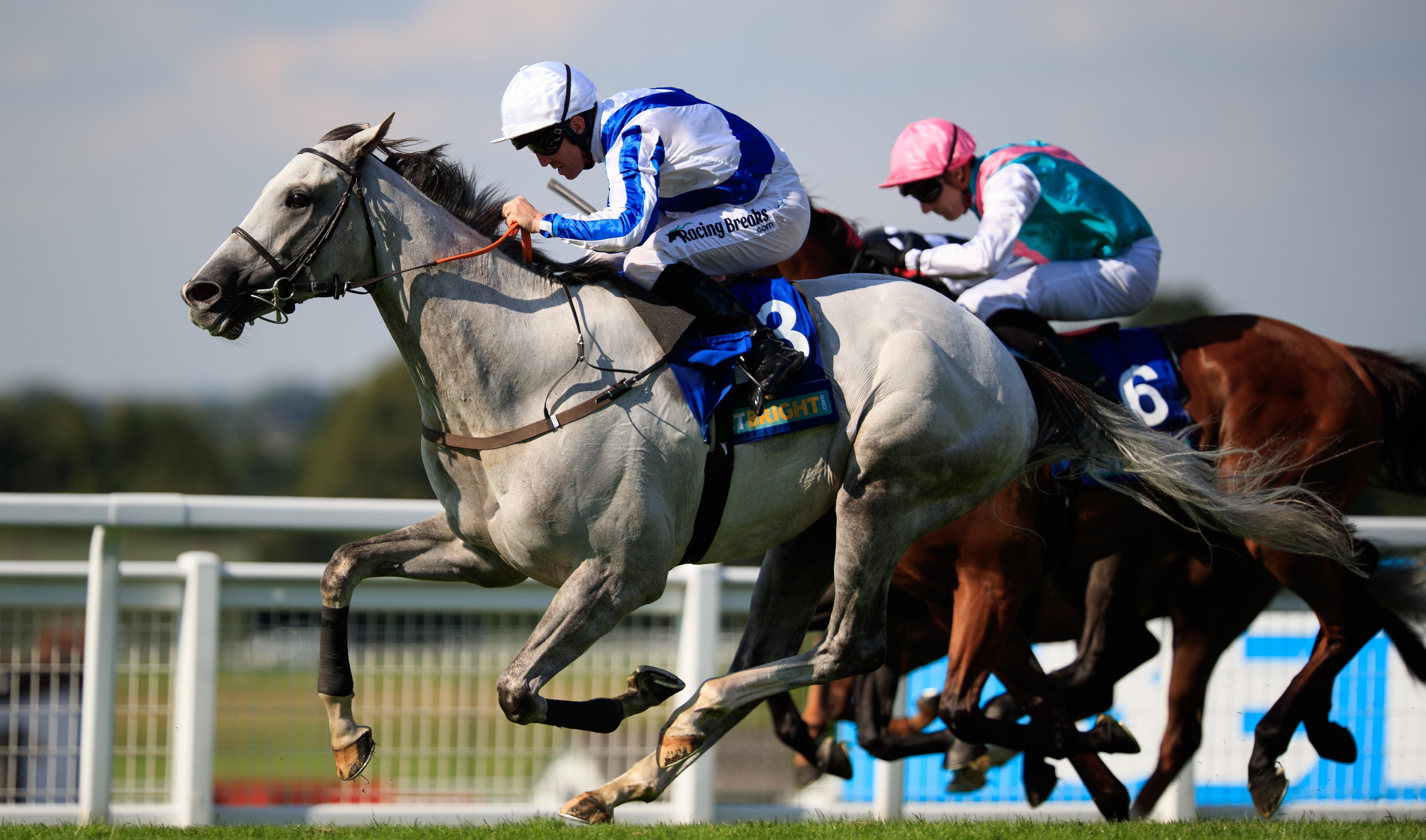 Juddmonte International Stakes: Japan edges out Crystal Ocean at York
