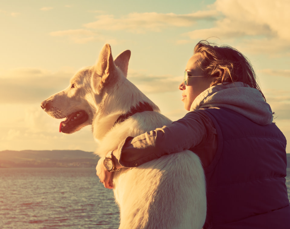 woman-and-dog-soaking-in-sun-i-screen