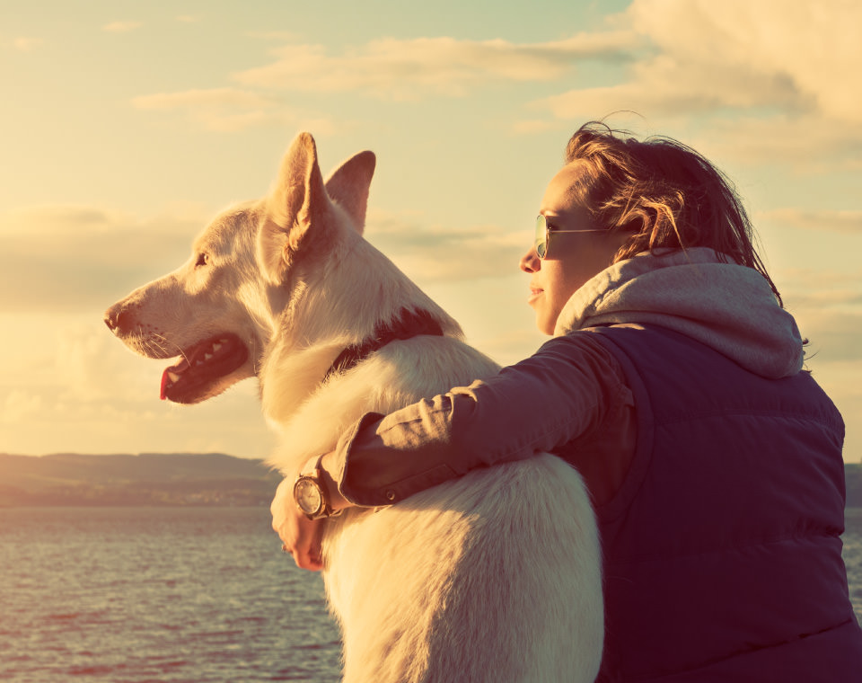 woman-an-dog-enjoying-the-sunlight-i-screen