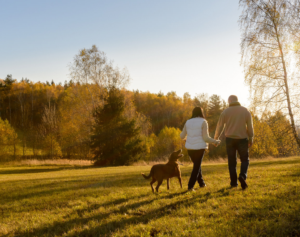 man-and-woman-walking-in-park-small-healthily