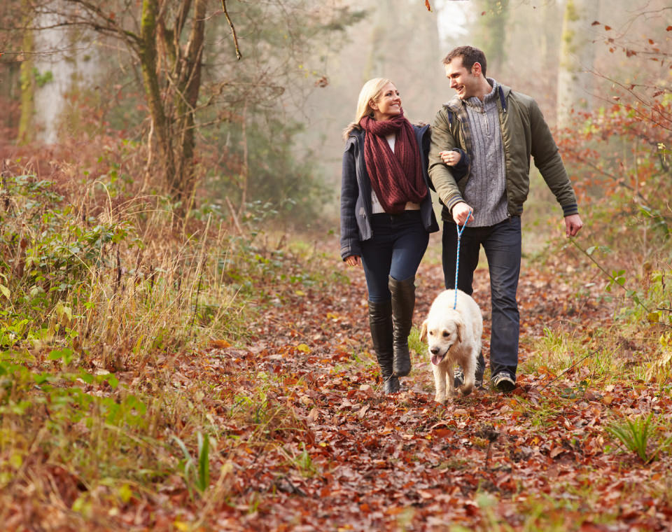 happy-couple-walking-their-dog-in-autumn-forest-i-screen