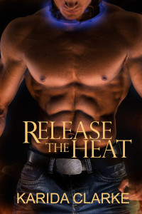 Release the Heat Book Cover