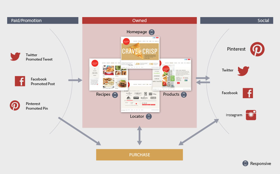 Springbox Social Strategy Primizie Purchase Ecosystem