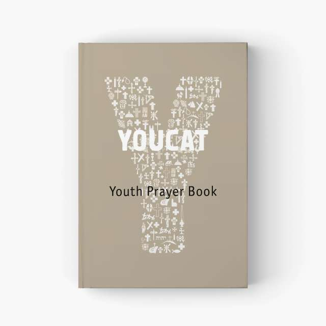 Daily bible study catholic youth