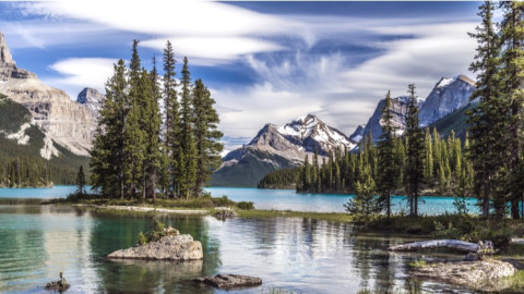 Shutterstock Custom explores nature with Mastercard