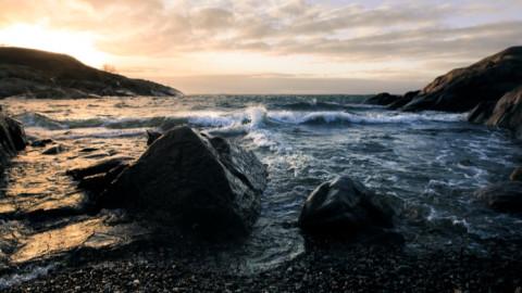 Shutterstock Custom visits the ocean with Alaska Air