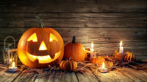 Trending autumn image 4