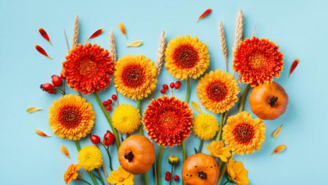 Trending autumn image 5