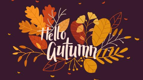 Trending autumn image 1