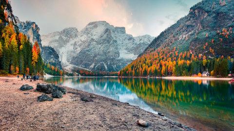 Trending autumn image 7
