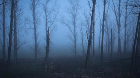 Horrorscapes - Thumbnail