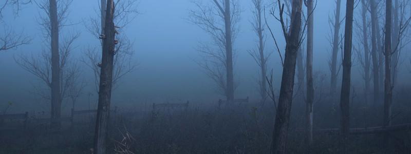 Horrorscapes - Banner