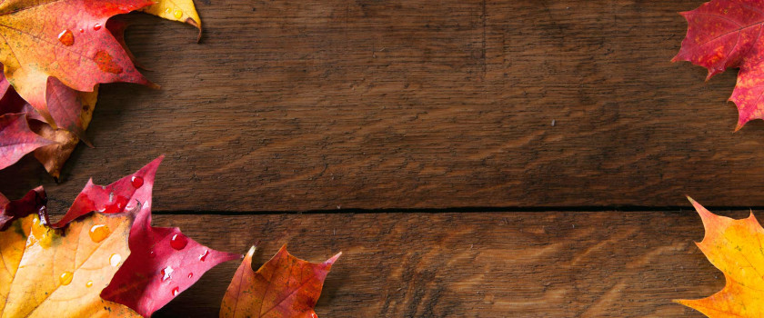 Autumn free images - Subcategory