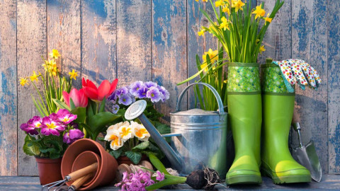 Spring Color Palettes 2021: 10 Color Trends to Spark Joy and Creativity