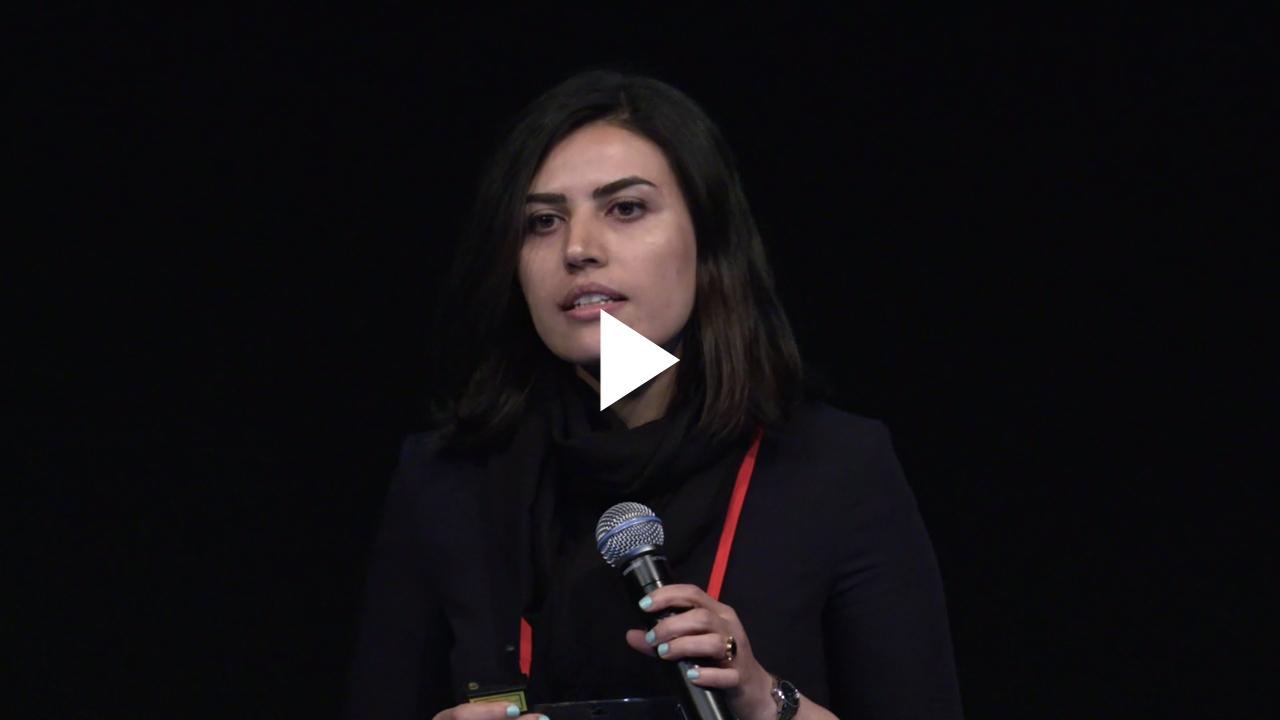 "Mina Rezaei ""Deep Representation Learning for Imbalanced Medical Image Segmentation"""