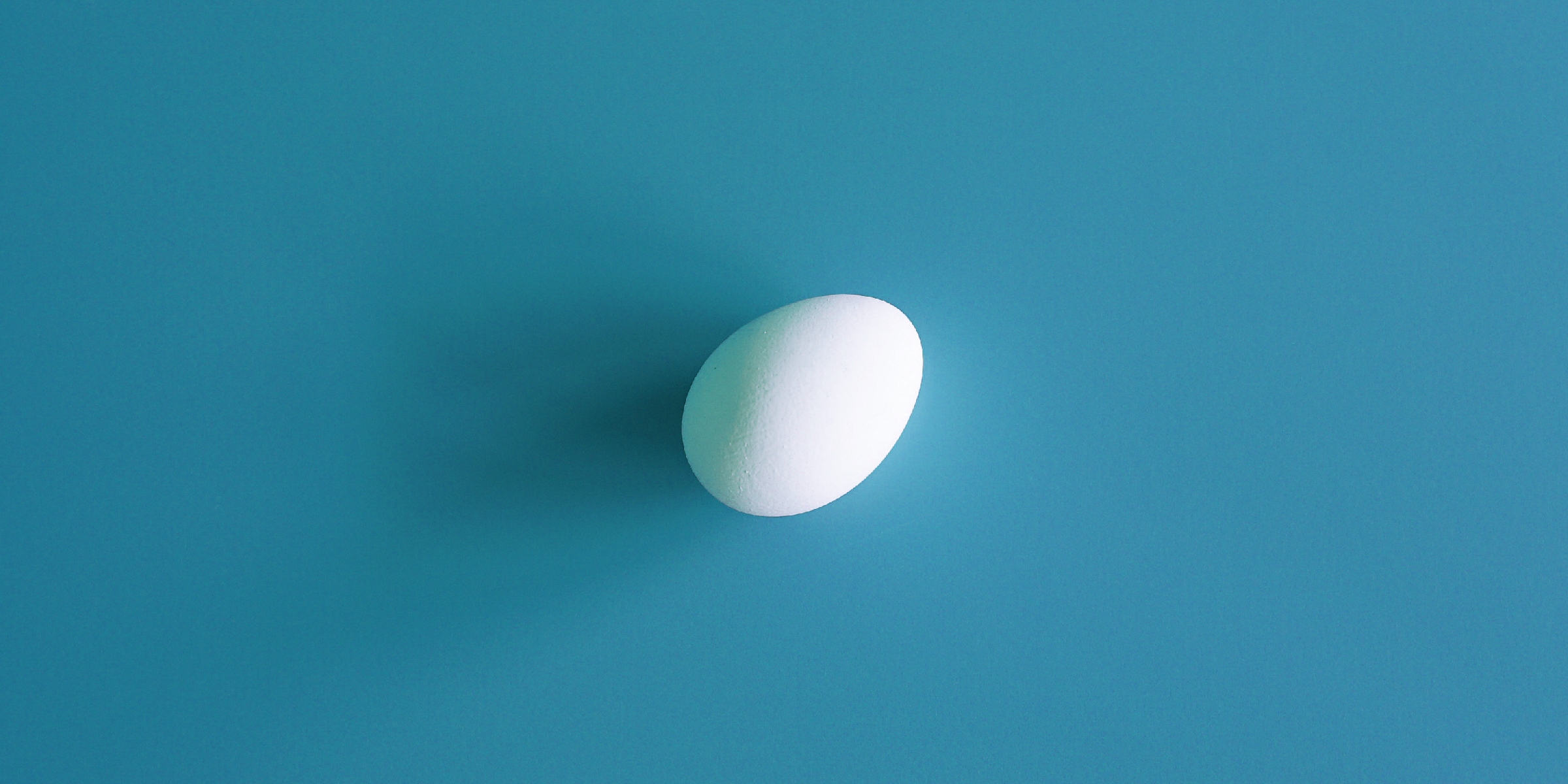 Photograph of a white egg on a marine background