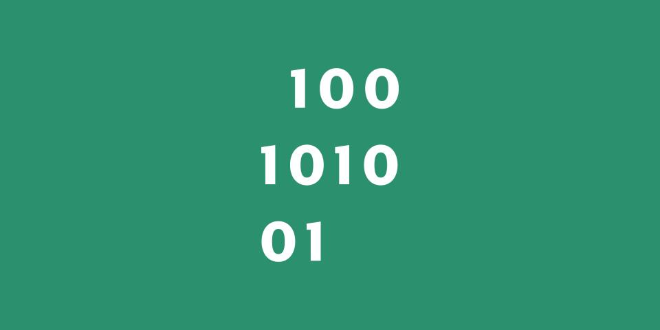 100101001