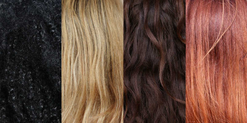 Photographs of 4 different types of hair: black, blond, brown, red.