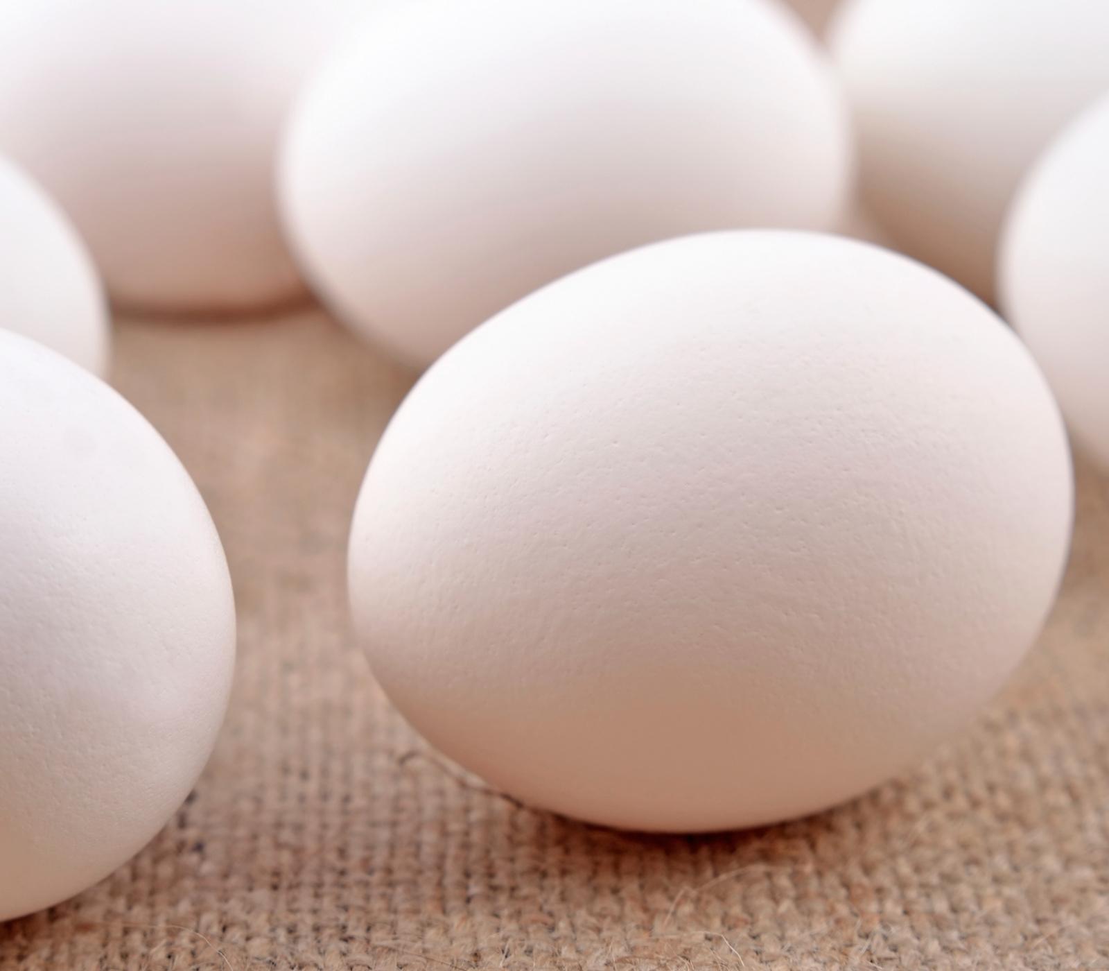 frischetest f r eier annemarie wildeisens kochen. Black Bedroom Furniture Sets. Home Design Ideas