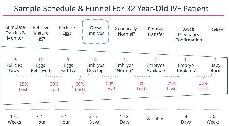 Grow Embryos