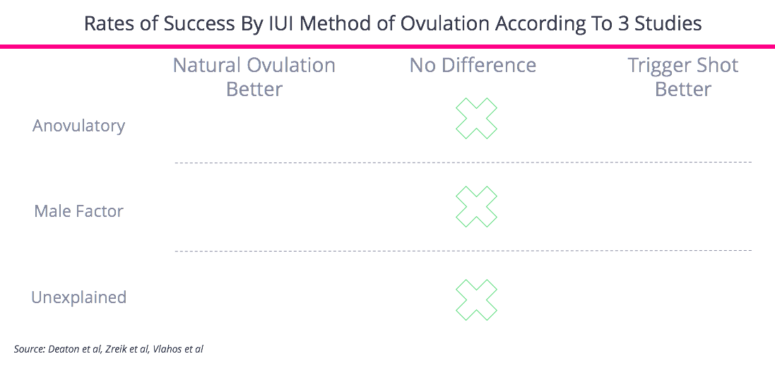 IUI Ovulation Approach