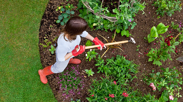 The Major Health Benefits of Vitamin G… Gardening!
