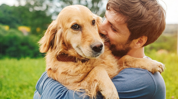 Do Dogs Like To Be Cuddled?