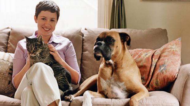 Pets Keep Us Mentally Healthy!