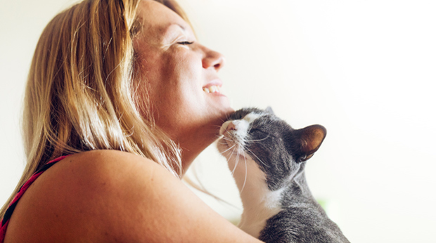 Does Your Cat Love You?