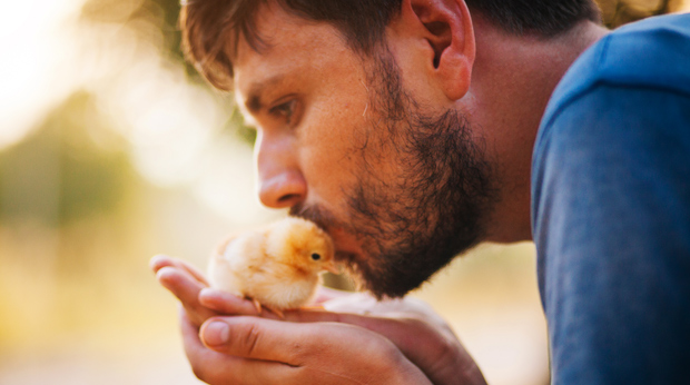 Stop Kissing Your Chicken!