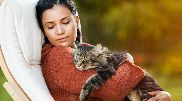 Good Reasons To Adopt A Cat: