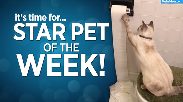 Star Pet Of The Week – March 8, 2019