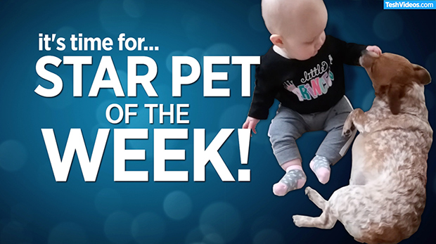 Star Pet Of The Week – May 9, 2019