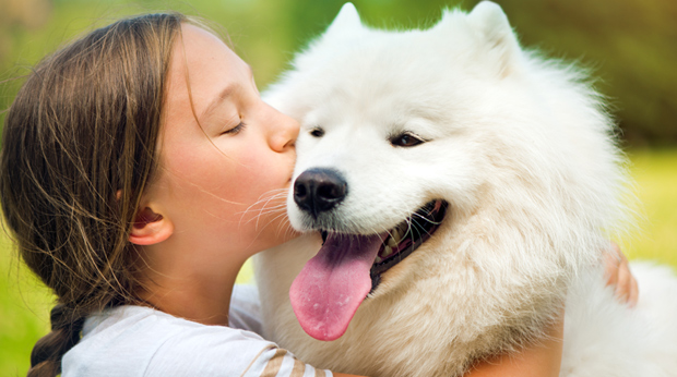 Love Dogs? It's In Your DNA!