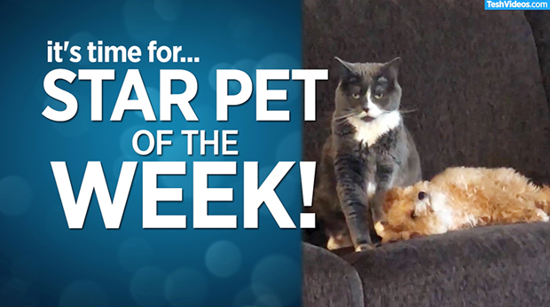 Star Pet Of The Week – January 3, 2020