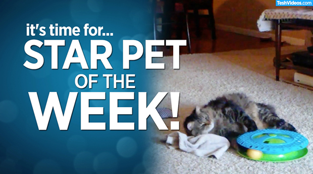 Star Pet Of The Week – June 28, 2019