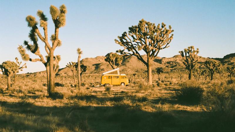 Vanlife Living in Joshua Tree National Park
