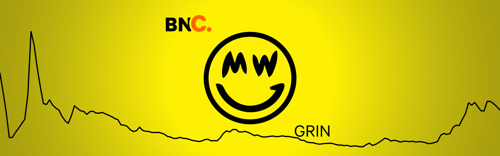 GRIN Price Analysis: A new paradigm for privacy coins