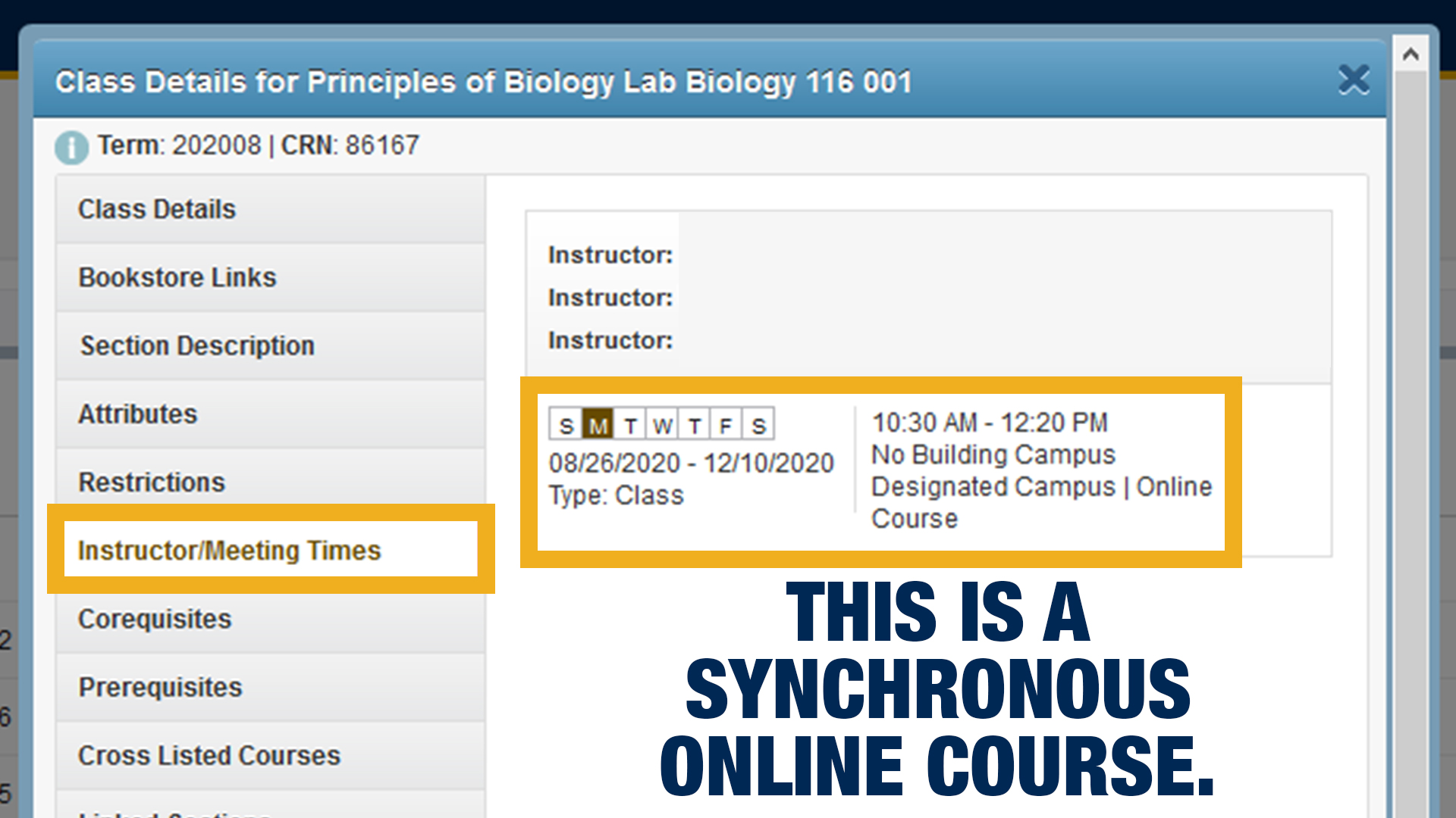 Screenshot of what a synchronous online course