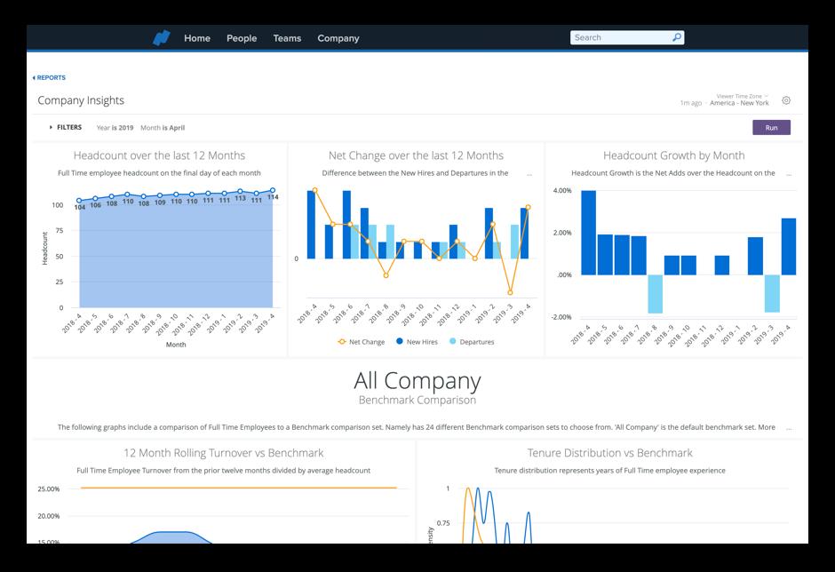 company insights dash