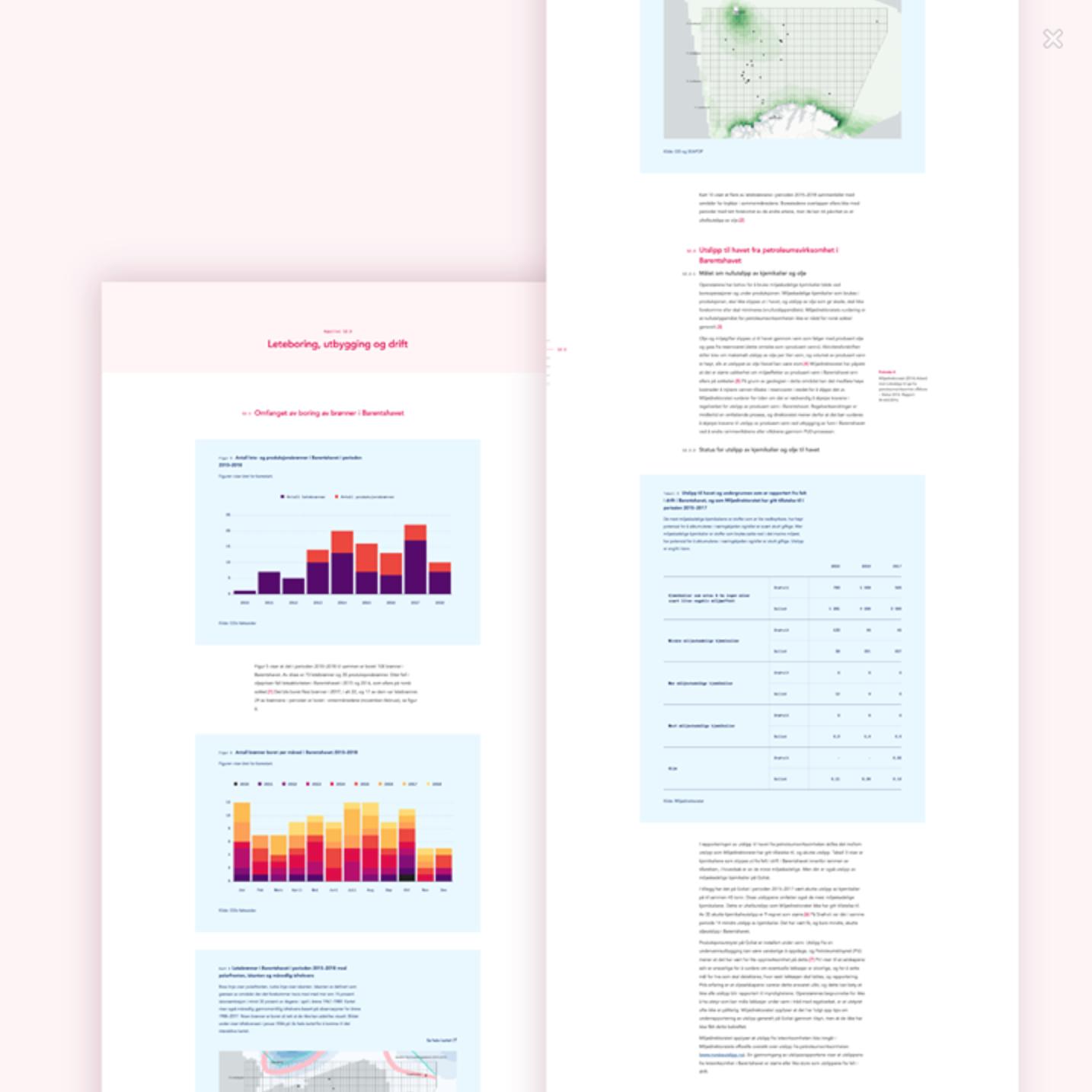 Screenshot from Riksreviasjonens website showcasing raports and graphs