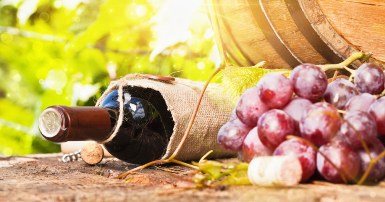 Riga wine tasting and winery tour - Pissup stag do