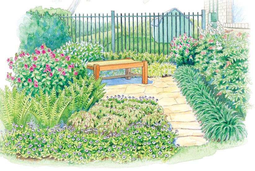 A shade garden makeover | Garden Gate