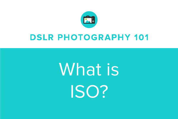 DSLR Photography 101: What is ISO?