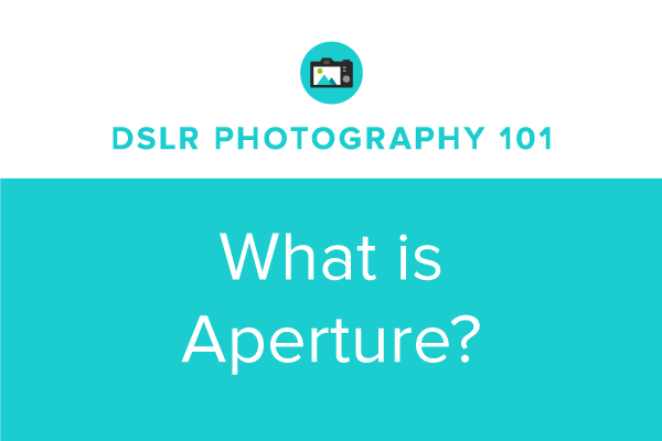 DSLR Photography 101: What is Aperture?